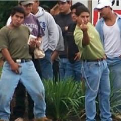 מהגרים